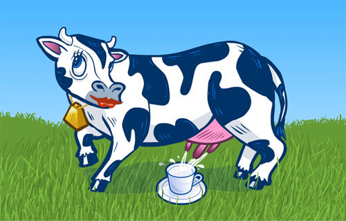 skąd się bierze mleko