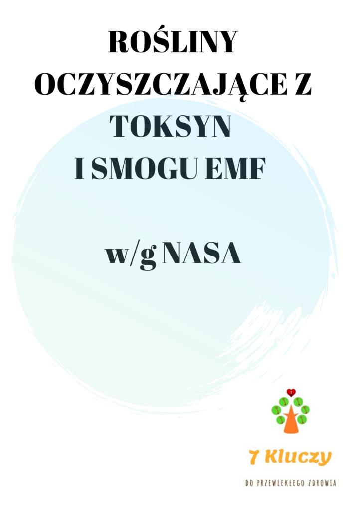 rośliny oczyszczające powietrze z toksyn i smogu EMF