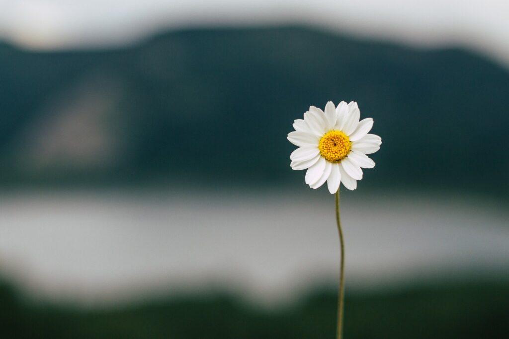 10 nawyków ludzi wolnych od stresu, lęku i niepokoju